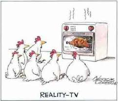 Reality tv chicken 2